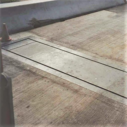 Axle Truck Scales